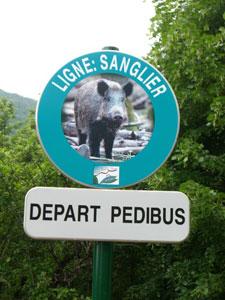 Panneau-depart-Pedibus.jpg